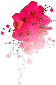 dsgn_1841_flowers.png